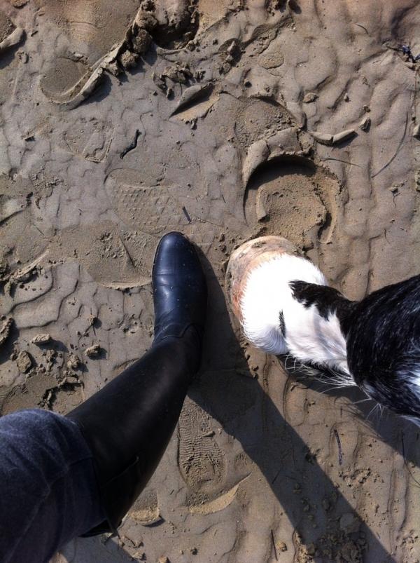 Urlaub mit den Pferden